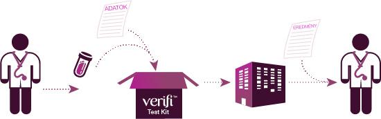 A Verifi-teszt logisztikai modellje | a verifi-teszt a leggyorsabb és legpontosabb anyai vérből történő Down-kór, Edwards-kór és Patau-kór szűrő vizsgálat